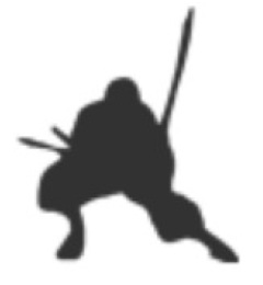 NinjaRon